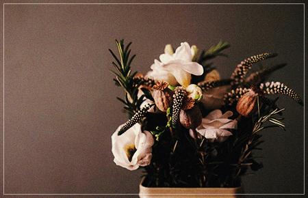 植物をインスピレーション源にした布製品